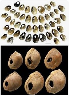 One of the oldest jewelry found in Morocco estimated to be 82,000 years old. Those are small shells with holes for necklace.