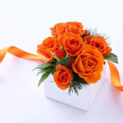 ary dpo blog orange flowers in the white box